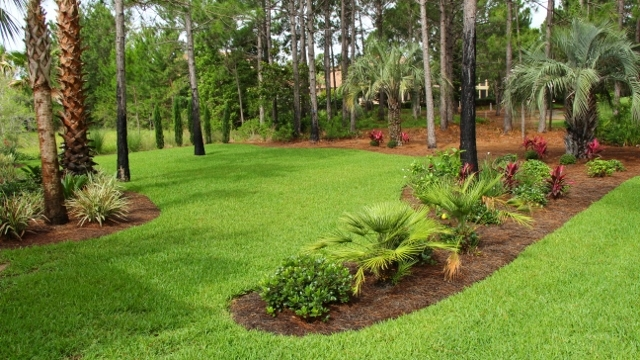 residential landscaping florida