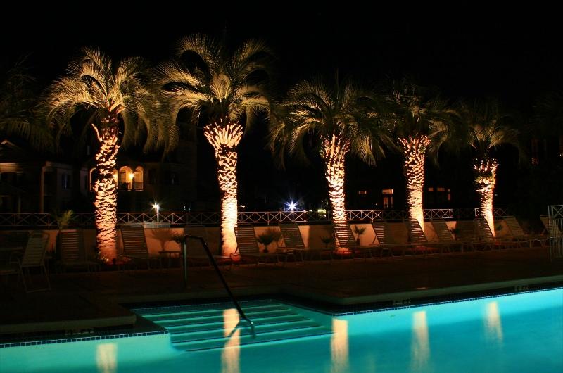 Florida Landscape Lighting Projects